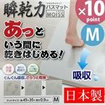 【OHE】珪藻土 浴室腳踏墊 (M)