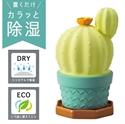 【DECOLE】仙人掌造型除濕器(咖啡底)