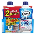 【雞仔牌】 洗衣機清洗劑 (2入組)