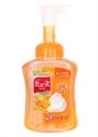 【MUSE】洗手液(本體-果香)
